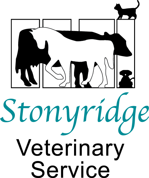 Stonyridge Veterinary Services